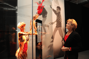 Body Worlds Vital Exhibition @ V&A Waterfront | Cape Town | Western Cape | South Africa